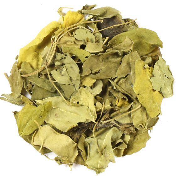 Organic Moringa Leaves Herbal Tea