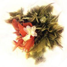 Jasmine Lily Tea Flower