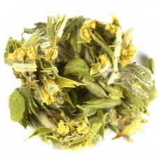 Mountain Tea Sideritis Scardica Olympus Tea
