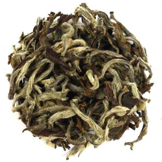 Assam White Tea