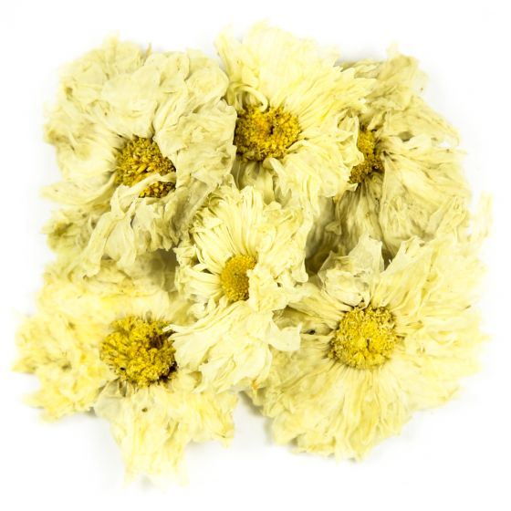 Chrysanthemum Flower Tea