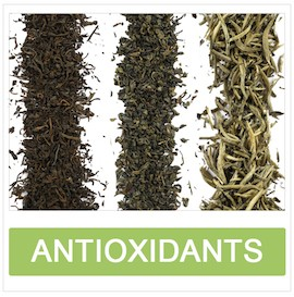 Antioxidants in Tea