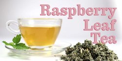 Raspberry Leaf Tea Pregnancy