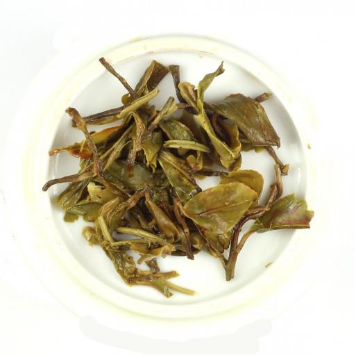Darjeeling Wet Leaves