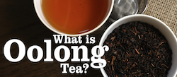 What is Oolong Tea