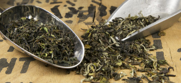 Darjeeling First Flush Teas Are Now Available!