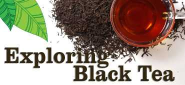 Exploring Black Tea