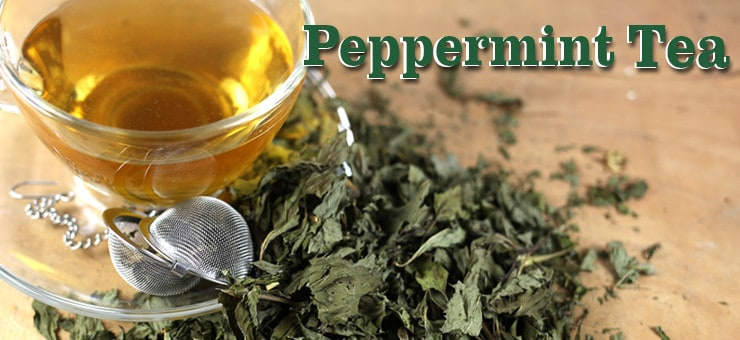 Peppermint Tea and its Health Benefits