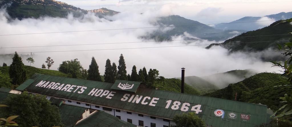 Margret's Hope Darjeeling Tea Estate