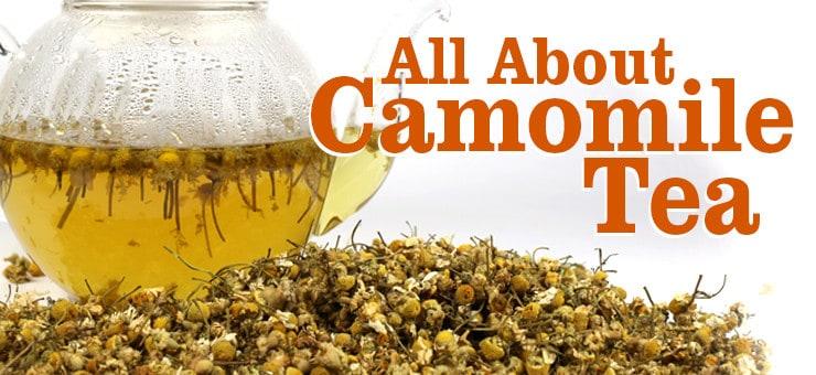 History and Health Benefits of Camomile Tea