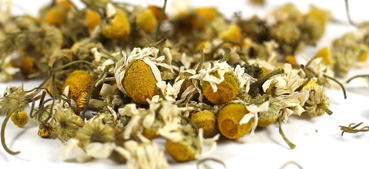 Camomile Tea or Chamomile Tea