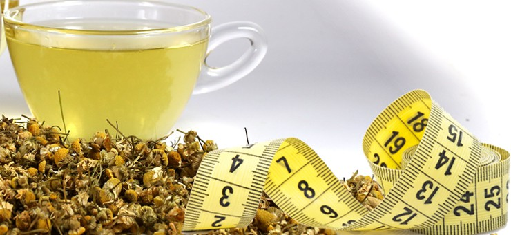 Camomile can help you loose weight