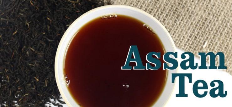 Assam Tea History & Health Benefits