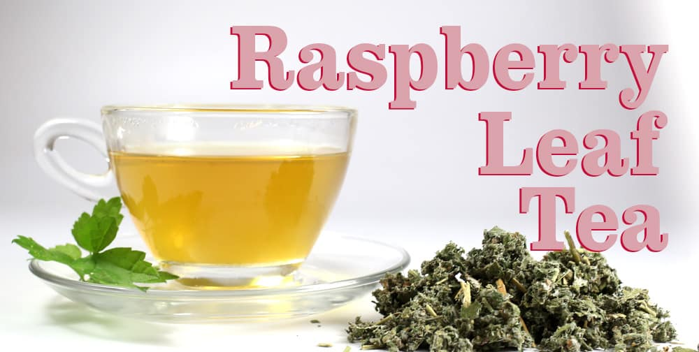Raspberry Leaf Tea Pregnancy Benefits