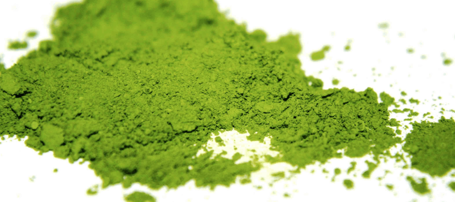 What is Matcha powder? All you need to know