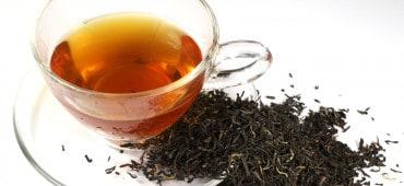 Darjeeling Tea Under Threat as Protests and Violence Hit Darjeeling