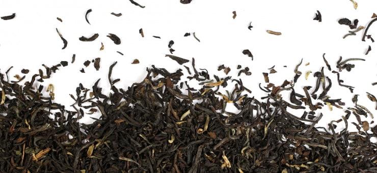 Darjeeling Tea History