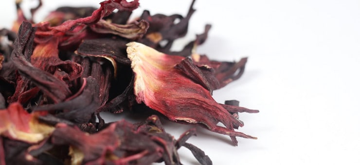 What is Hibiscus?