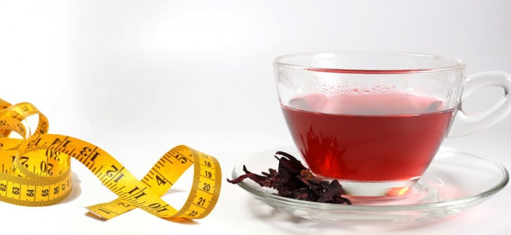 Weight Loss with Hibiscus Tea
