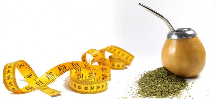 Yerba Mate Weight Loss