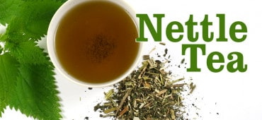 What is Nettle Leaf Tea Good For?