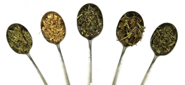 What is Detox Lemon and Ginger Tea
