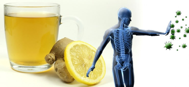 Improved Immune System with Tea