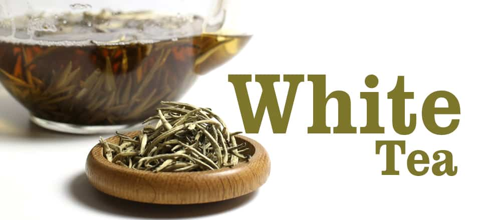 What is white tea? What are the health benefits?