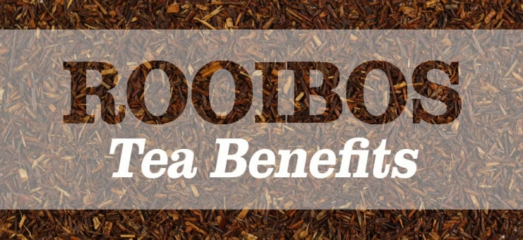 Rooibos Tea Benefits