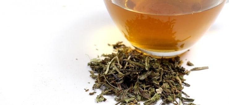 Health Benefits of Drinking Dandelion Tea
