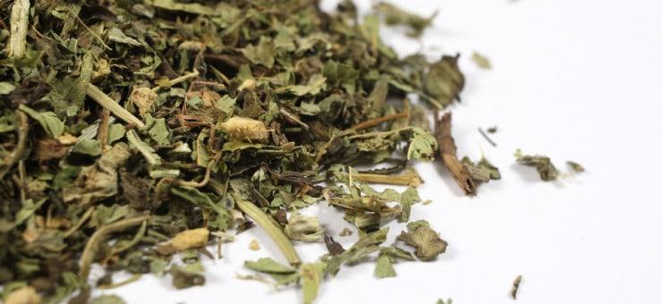 Milk Thistle Tea Blends