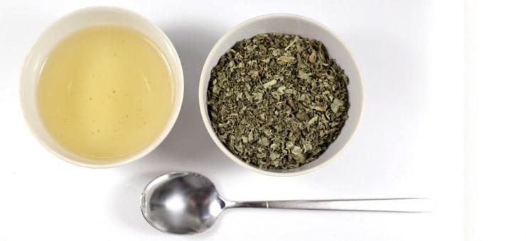 Milk Thistle Tea Benefits