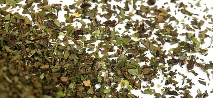 Where to Buy Spearmint Tea