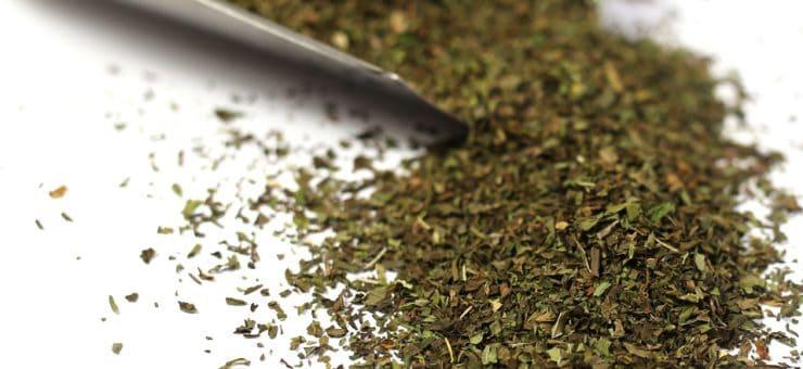 Learn about Spearmint Tea