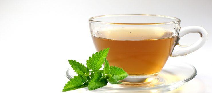 Spearmint Tea Weight Loss Tea