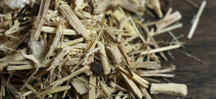 Types of Ginseng