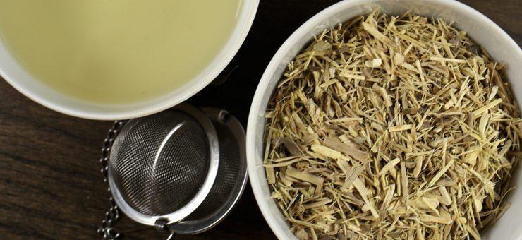 Ginseng Tea Weight Loss