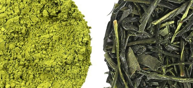 Matcha Tea vs Green Tea for Convenience
