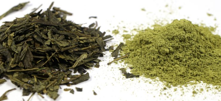 Matcha Tea vs Green Tea for Popularity