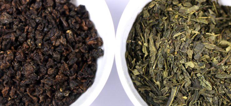 Oolong Tea vs Green Tea Health Benefits