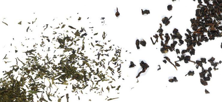 Taste of Oolong Tea vs Green Tea