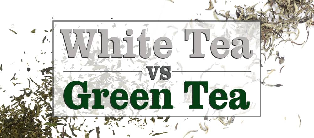 White Tea vs Green Tea