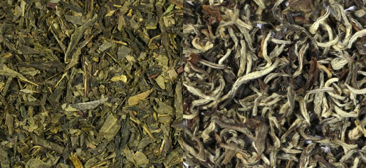 White Tea vs Green Tea for Popularity