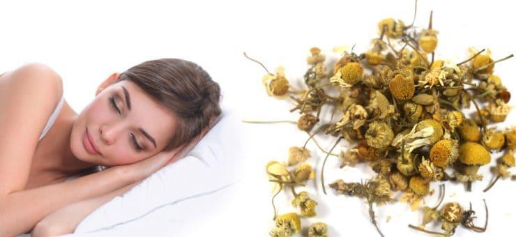 Camomile Tea Sleep