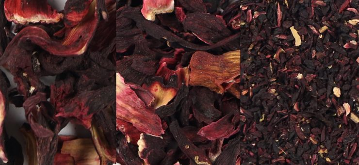 Hibiscus Tea can Support the Immune System
