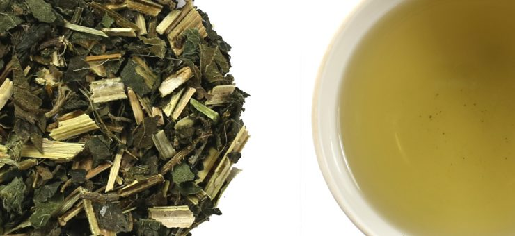 Nettle Tea and Anti-Inflammatory Properties