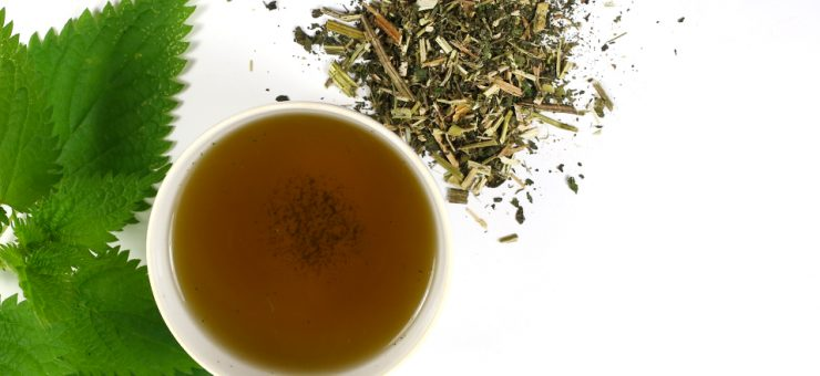Nettle Tea and Improved Blood Circulation