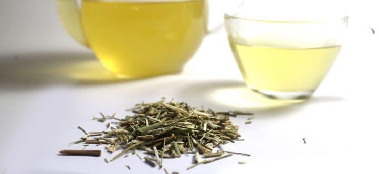 Fennel Tea Weight Loss