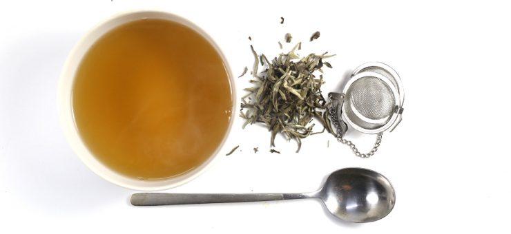 White Tea Weight Loss
