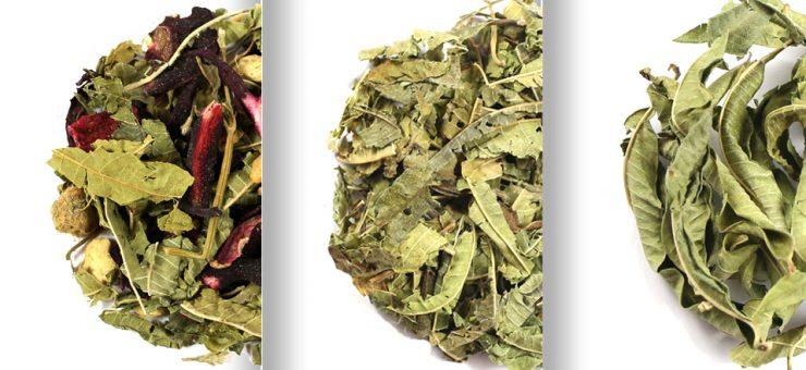 Where to Buy Lemon Verbena Tea